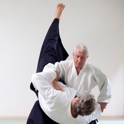 Aikido-Zentrum-Duesseldorf-Hilmar-2